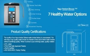 Top Of The Line Ionizer
